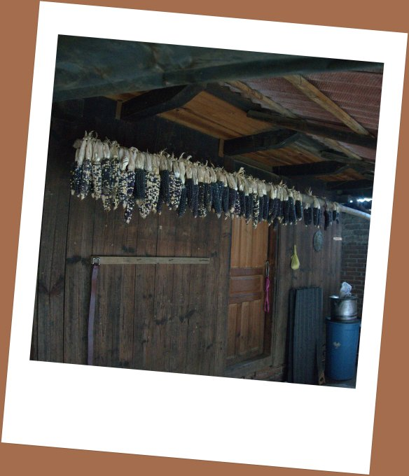 We went into one village home - hard to see across the room with wood used for heat as well as cooking and poor ventilation - blue corn hanging everywhere to dry.