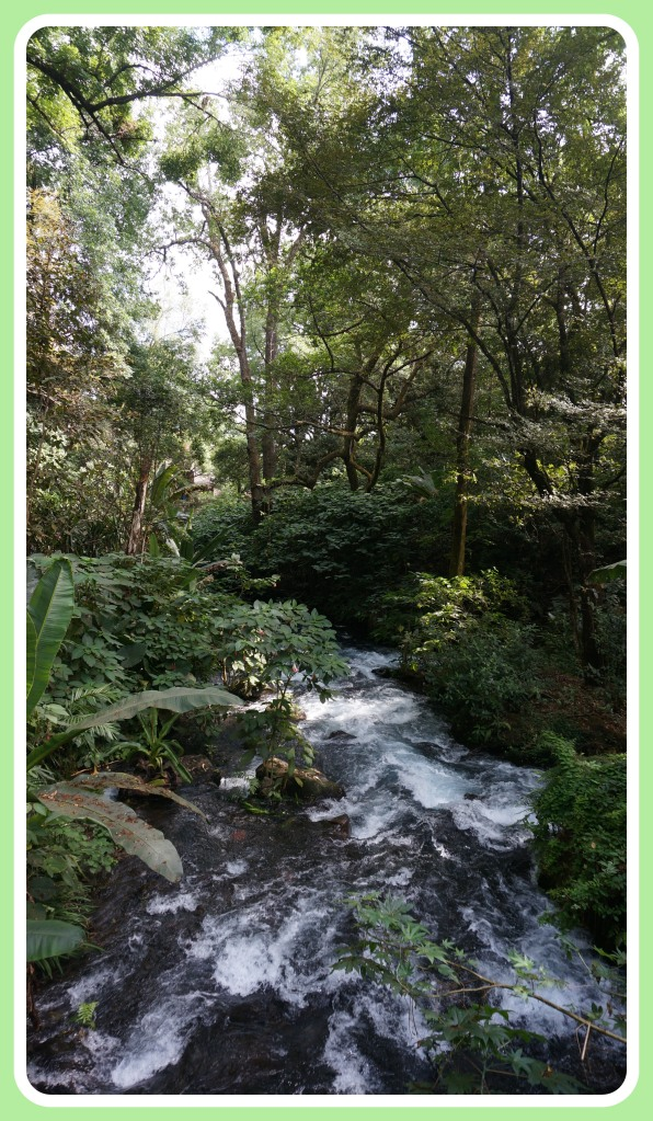 El Parque National Uruapan