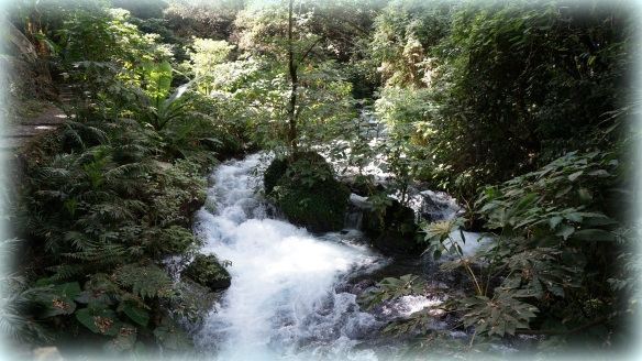 Beautiful water, cascading everywhere