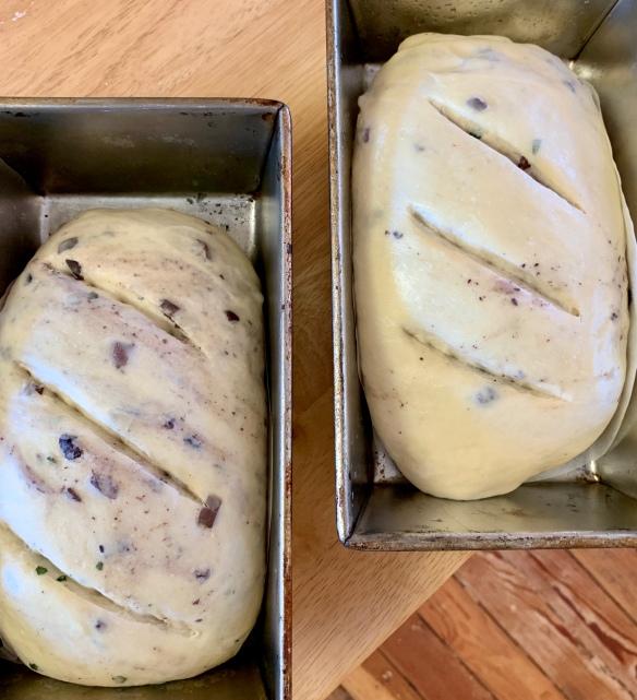 olive loaf 4